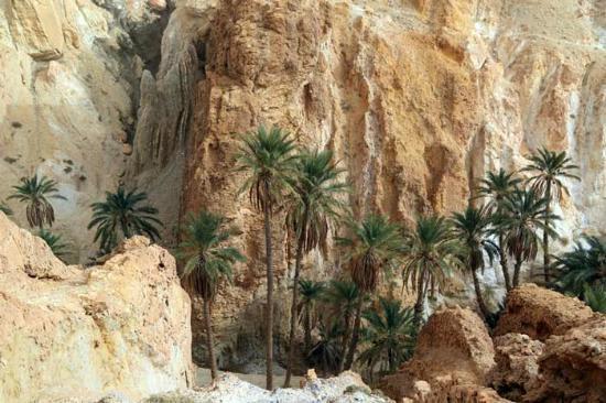 Sidi Bouhlel Canyon