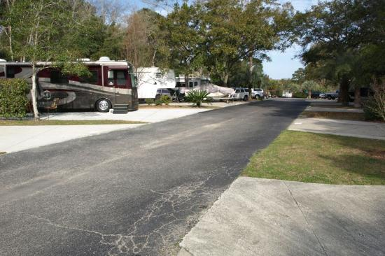 Hilton Head Harbor RV Resort and Marina: Paved roads to Campsites