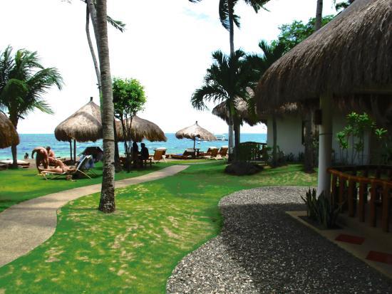 Pura Vida Beach Dive Resort Bungalows Beim Meer