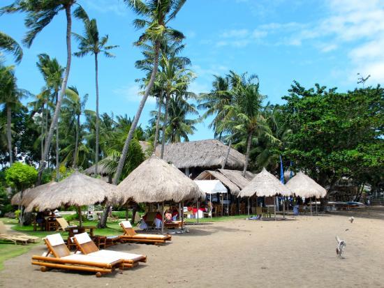 Pura Vida Beach Dive Resort Strandblick Vom Meer