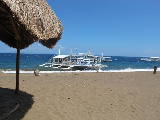 Pura Vida Beach Dive Resort Tauchboot Banka