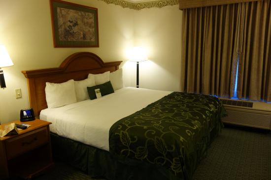 Wingate by Wyndham BWI Airport: Standard Room - huge bed!