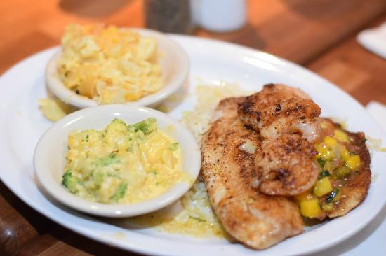 Grilled Tilapia with Mango Salsa - Picture of Cheddar's, Brandywine ...