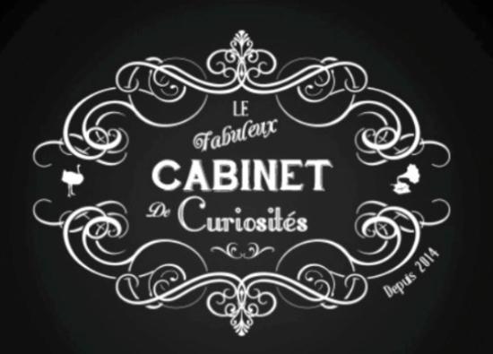 Le Fabuleux Cabinet de Curiosités