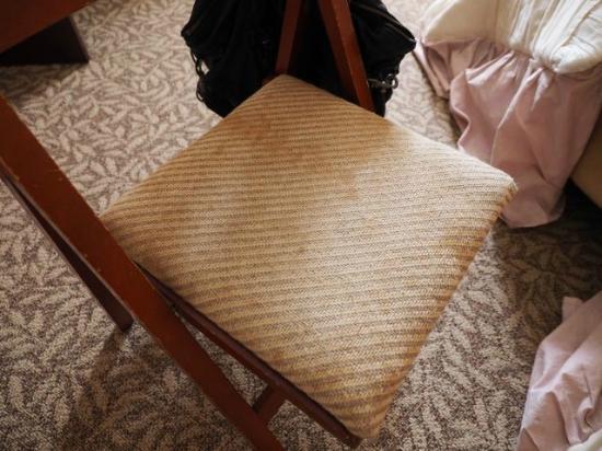 Resort Hotel Rosenheim Hakuba : Dirty chair