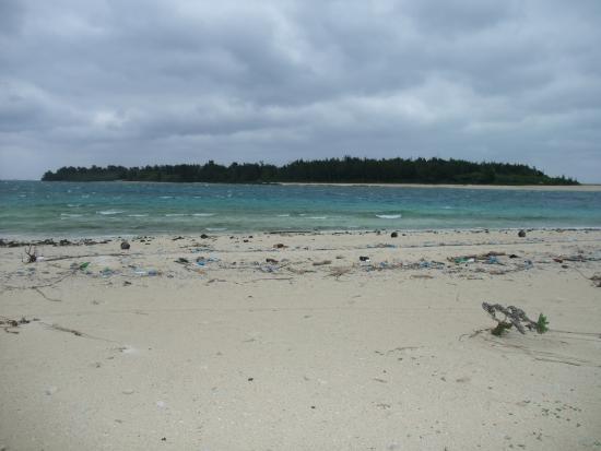Ojima Island: オーハ島
