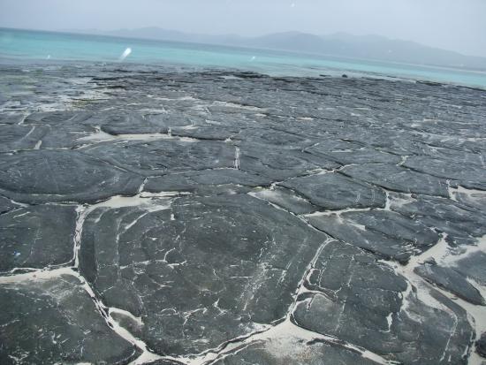 Ojima Island: 畳石