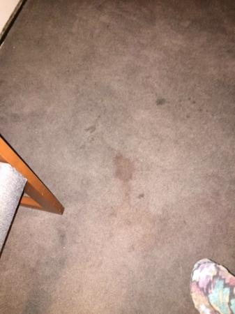 Motel 6 Charles Town: stains all over the carpet