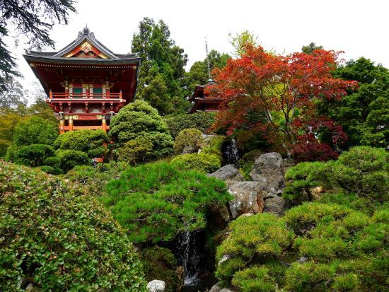 Japanese Tea Garden Picture of Japanese Tea Garden San