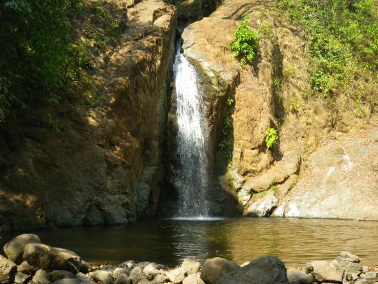 Rain Forest Adventure: Rainforest Adventures: Rainforest Waterfall Tour