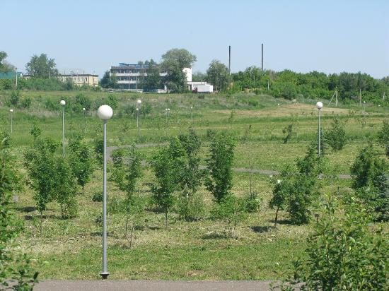 Buzuluk, Russia: getlstd_property_photo