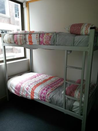 Bedroom Picture Of Wild Zebra Backpackers Wellington Tripadvisor