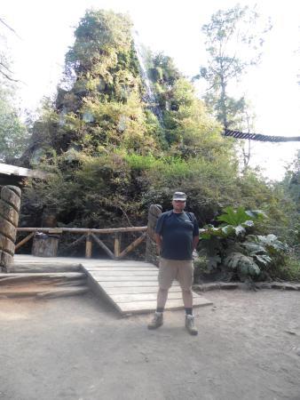 Neltume, Chile: Entrada Hotel