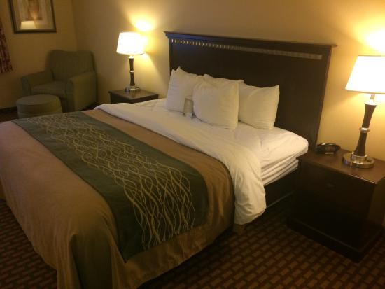 Comfort Inn Humboldt Bay: King bed room