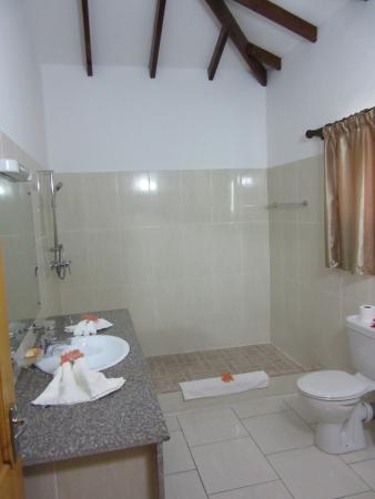 Villa Veuve : camera bagno