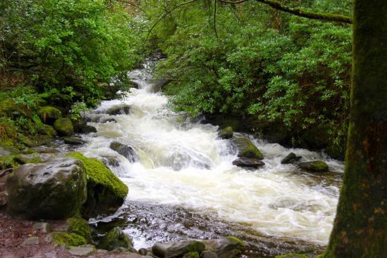 Torc Mountain Walk: River