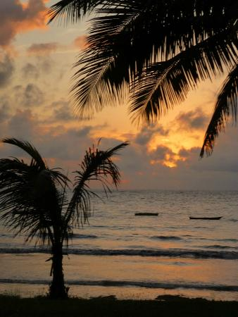 Four Twenty South Beach Cottages: Sun, sand, palm trees and a lovely beach made 420 South a wonderful place to relax