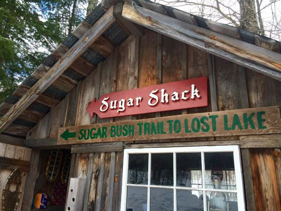 Wintergreen Maple Syrup and Pancake Barn : Taffy party spot