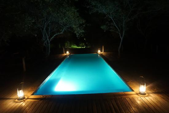 Toro Yaka Bush Lodge : pool