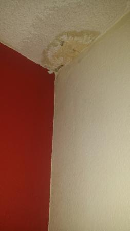 Island Drive Lodge: The water damaged ceiling complete with mold, the cigarette burned bathtub and the AWESOME elect