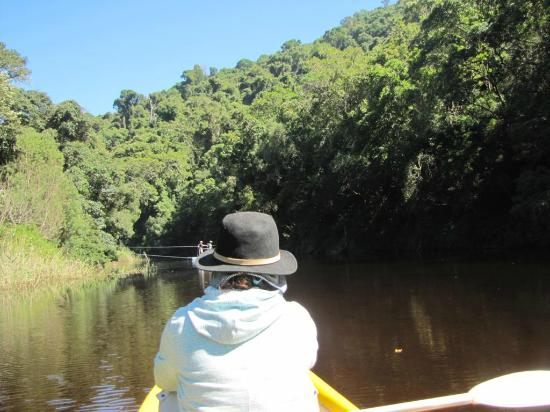 Wilderness, Südafrika: Canoing along the Touwsriver