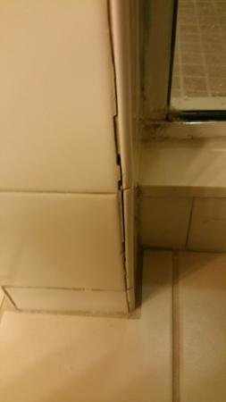 Holiday Inn Express Hotel & Suites New Tampa I-75 Bruce B. Downs: tiles in bathroom