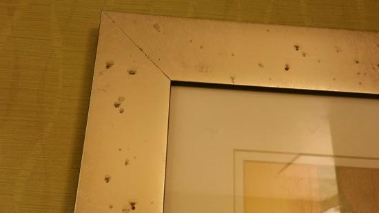 Holiday Inn Express Hotel & Suites New Tampa I-75 Bruce B. Downs: spots on picture in bathroom - not sure, maybe mold