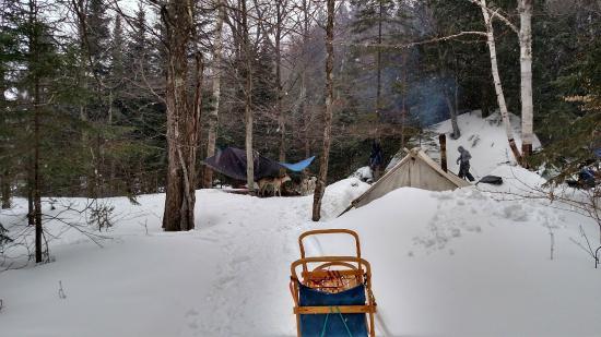 Montgomery Adventures - Day Tours: Campsite