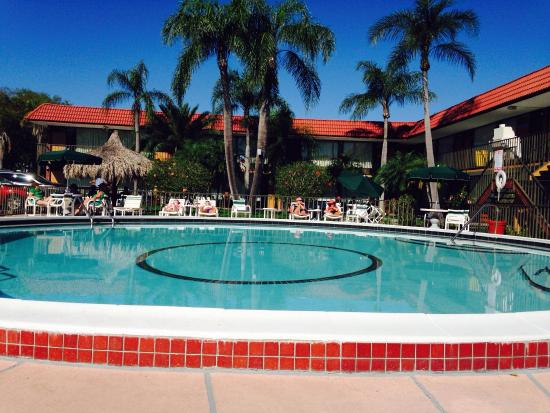 Days Inn Clearwater/Central : The pool