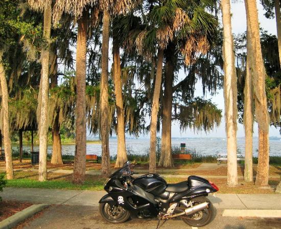 Lake Dora : Palm Island Park