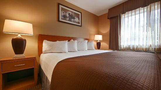Quality Inn Madras: 1 King Bed