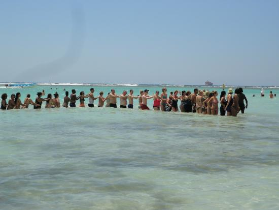Conga Line In The Water After Beach Aerobics Picture Of Be Live Experience Hamaca Garden Boca