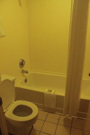 Super 8 Foley: Standard bath area