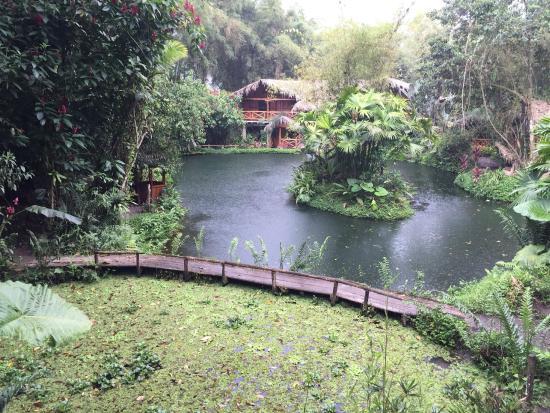 Mindo Lago: Vista a las habitaciones matrimoniales desde el comedor