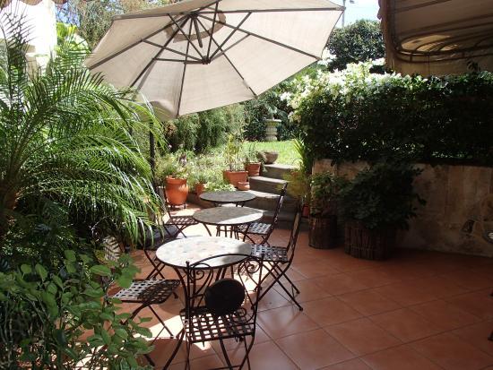 Colibri Hotel y Desayuno : Patio area.