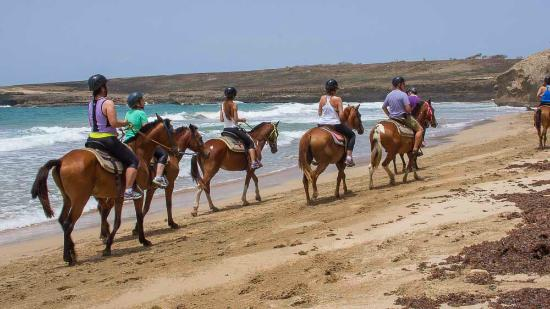 Atlantic Ss Riding Les Honeymoon Beach St Lucia Horse Ride