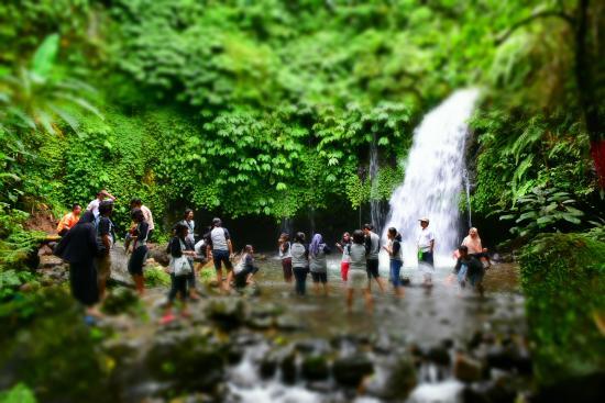 Jatiluwih Green Land: Air Terjun Yeh Hoo