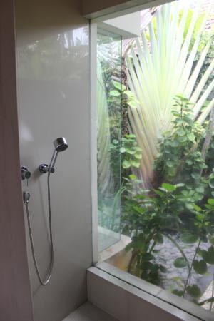 Disini Luxury Spa Villas: Shower