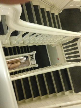 Nomads Capital Hostel Wellington: Las escaleras eran muy lindas