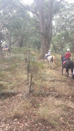 Hepburn Lagoon - Trail Rides