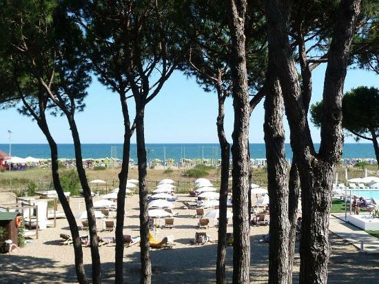 Hotel Mediterraneo: Vista Mare