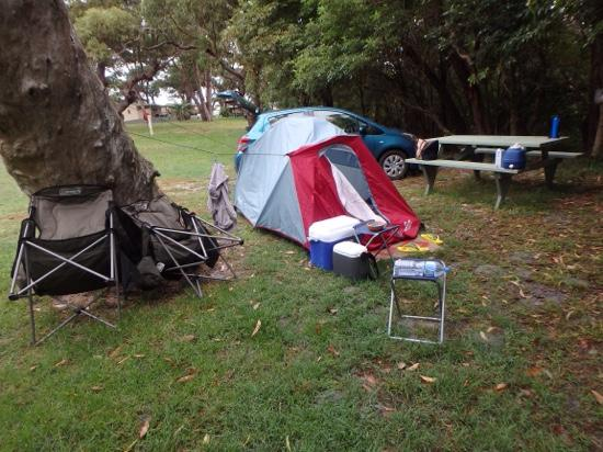 Ulladulla Headland Holiday Park: campsite in the trees
