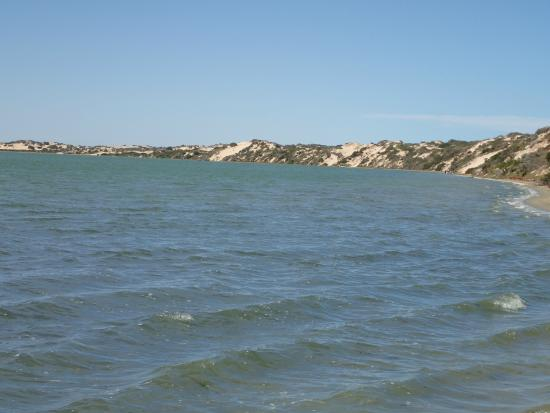 Canoe The Coorong - Day Tours: Typical Scenery