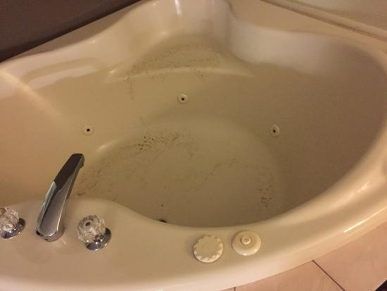 Park Inn by Radisson Sharon, PA: Just disgusting!
