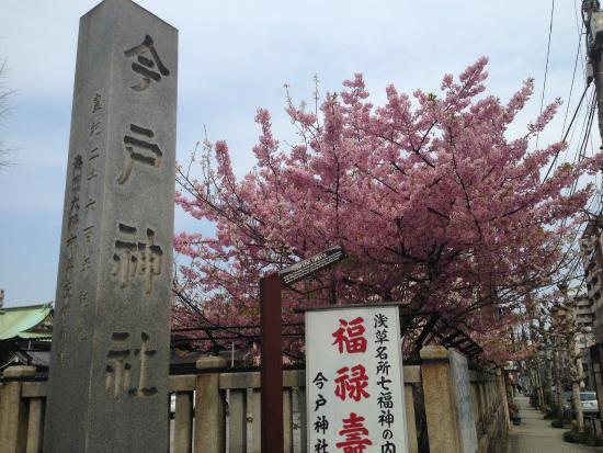 Imado Shrine : 入口
