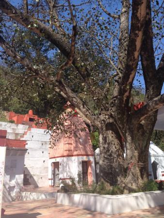 Tatwani Hot Spring: Tatwani Shiva temple