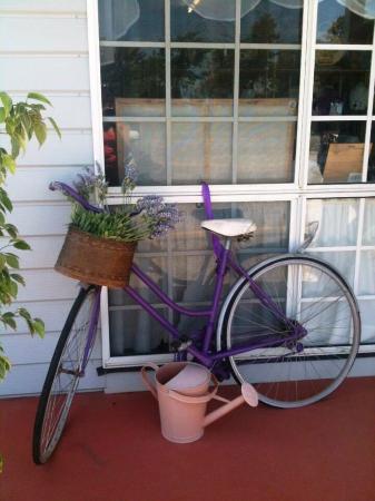 Bargara, Australia: Amandine Lavender shop