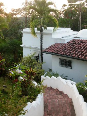 Hotel Casitas Eclipse: Jardin