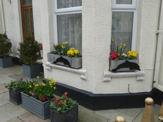 The Dolphin Hotel Exmouth: Colourful window boxes