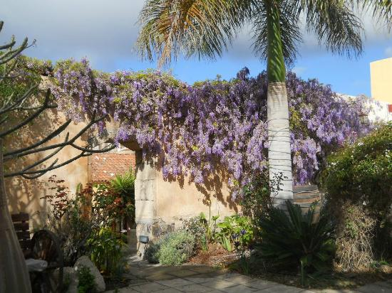Tenerife Self Catering - La Bodega: Entrance area